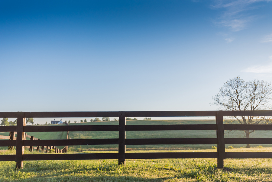 Agricultural Fences